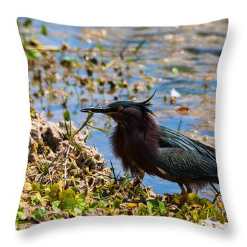 After Fishing Throw Pillow