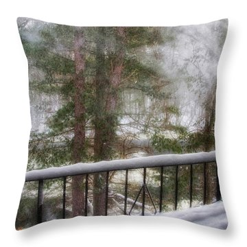 After Nemo 2 Throw Pillow by Joann Vitali