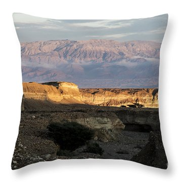 After Rain Colors 02 Throw Pillow by Arik Baltinester