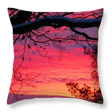 Day After Thanksgiving 2014 Sunset Throw Pillow by Tina M Wenger