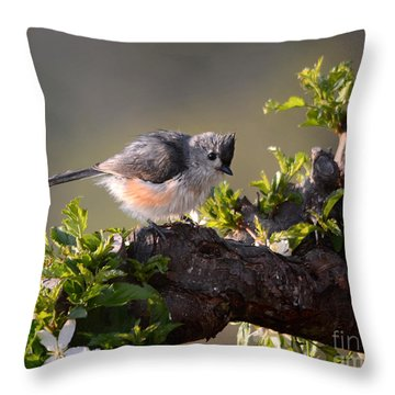 After The Bath Throw Pillow by Nava Thompson