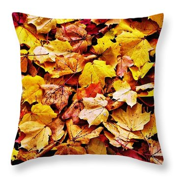 Throw Pillow featuring the photograph After The Fall by Daniel Thompson