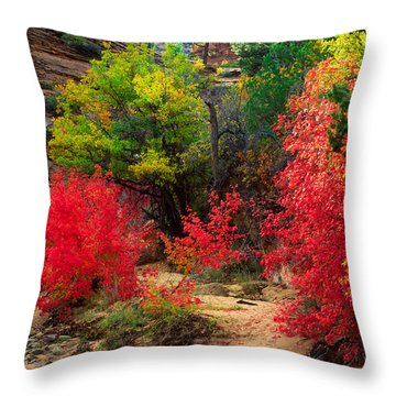 After The Flood Throw Pillow by Inge Johnsson