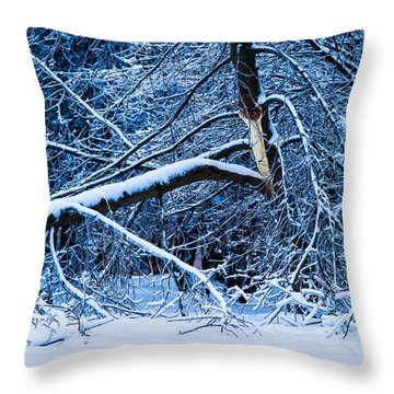 After The Icy Rain - Featured 3 Throw Pillow by Alexander Senin