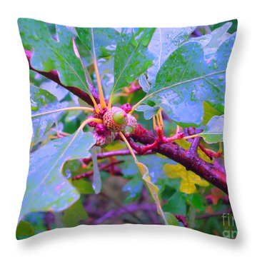 After The Morning Rain Throw Pillow by Ann Johndro-Collins