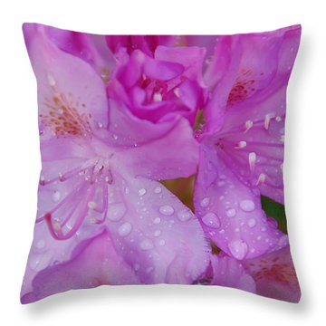 After The Rain Throw Pillow by Aimee L Maher Photography and Art Visit ALMGallerydotcom