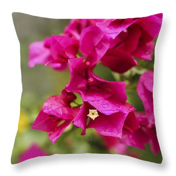 Throw Pillow featuring the photograph After The Rain by Amber Kresge