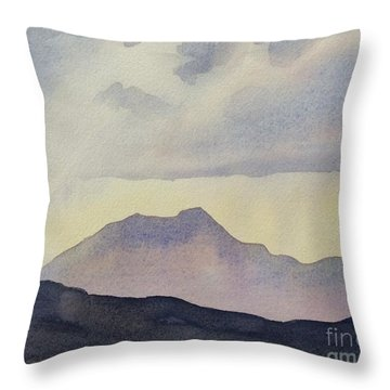 After The Rain Throw Pillow by Barbara Tibbets