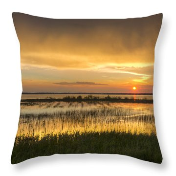 After The Rain Throw Pillow by Debra and Dave Vanderlaan