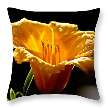 After The Rain Flower 1 Throw Pillow by Mark Russell