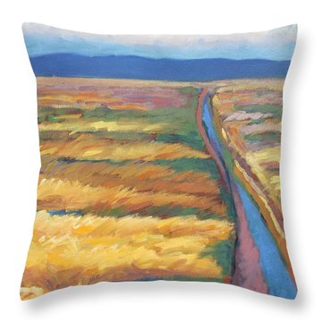 After The Rain Throw Pillow by Gary Coleman