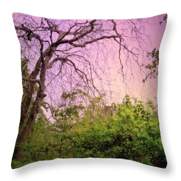 Throw Pillow featuring the photograph After The Rain by Jim Whalen