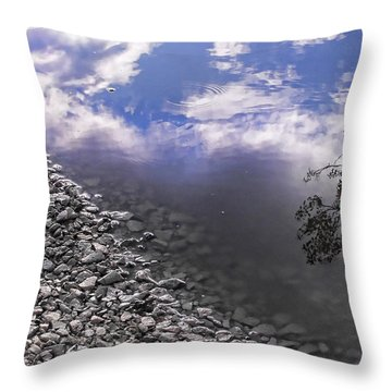 After The Rain Throw Pillow by Kristie  Bonnewell