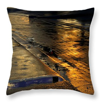 After The Rain Throw Pillow by Laura Fasulo