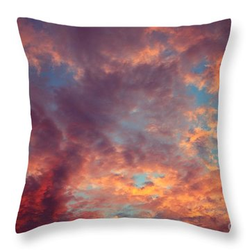 After The Rain Throw Pillow by Mary-Lee Sanders
