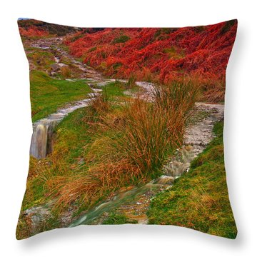 After The Rain - Moorland Streams Throw Pillow