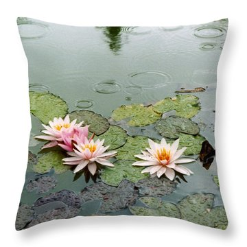 After The Rain Sun. Throw Pillow