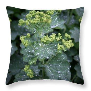 Throw Pillow featuring the photograph After The Rain by Susanne Baumann