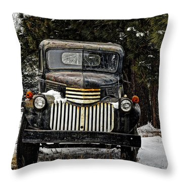 After The Snow Falls Throw Pillow by Ken Smith