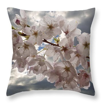 After The Spring Shower Throw Pillow