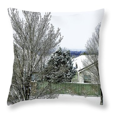 After The Storm-4 Throw Pillow