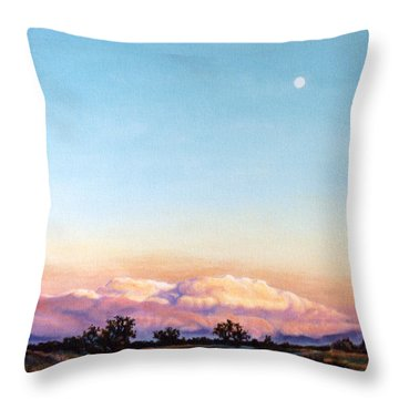 Throw Pillow featuring the painting After The Storm by Craig T Burgwardt