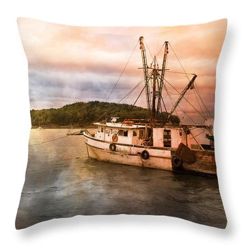 After The Storm Throw Pillow by Betsy Knapp