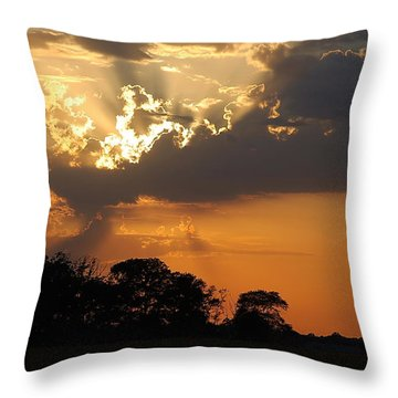 After The Storm Throw Pillow by Francie Davis