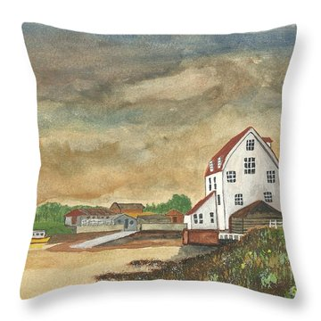 Throw Pillow featuring the painting After The Storm by John Williams