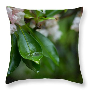 Throw Pillow featuring the photograph After The Storm by Patrice Zinck