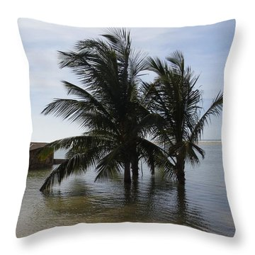 Throw Pillow featuring the photograph After The Storm by Susanne Baumann