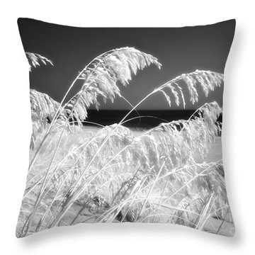 Afterglow I Throw Pillow