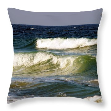 Aftermath Of A Storm Throw Pillow by Patricia Griffin Brett
