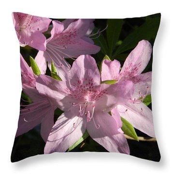 Afternoon Azaleas Throw Pillow by Nancy Spirakus