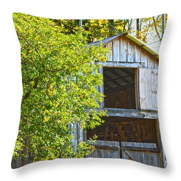 Afternoon Delight Throw Pillow by A New Focus Photography