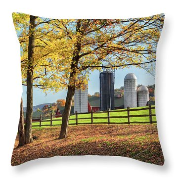 Afternoon Delight Throw Pillow by Bill Wakeley