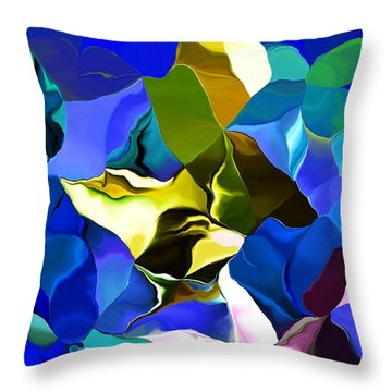 Throw Pillow featuring the digital art Afternoon Doodle 020215 by David Lane