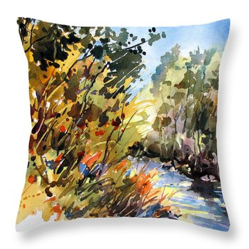 Throw Pillow featuring the painting Afternoon Glow by Rae Andrews