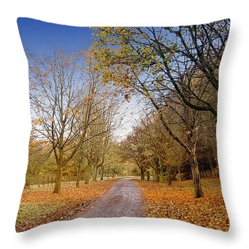 Afternoon In Autumn  Throw Pillow
