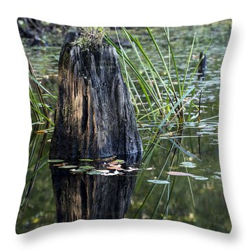Throw Pillow featuring the photograph Afternoon Light by Andrew Pacheco