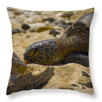 Reptiles Throw Pillows