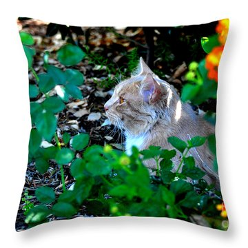 Afternoon Nap Interrupted Throw Pillow
