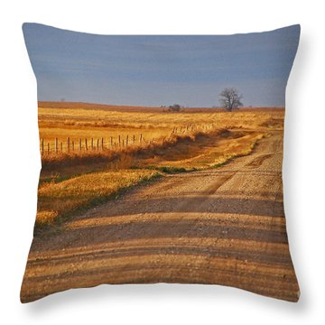Afternoon Shadows Throw Pillow by Mary Carol Story