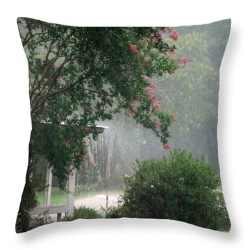 Afternoon Showers Throw Pillow by N S