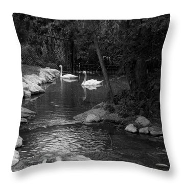 Throw Pillow featuring the photograph Afternoon Swim Bw by Elizabeth  Sullivan