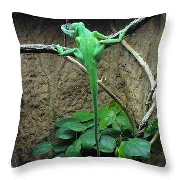 Throw Pillow featuring the photograph Afternoon Workout by Lingfai Leung