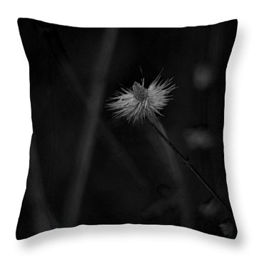 Throw Pillow featuring the photograph Afterword by Rebecca Sherman