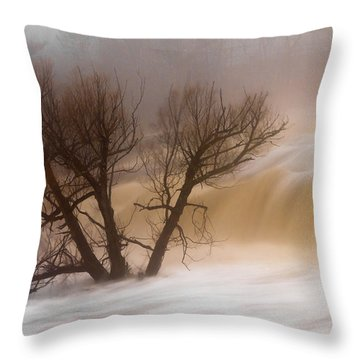Against The Current Throw Pillow by Mary Amerman
