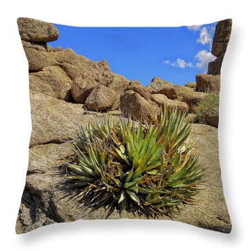 Against The Odds Throw Pillow by Michael Pickett