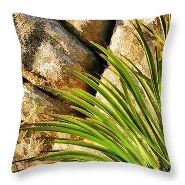 Against The Rocks Throw Pillow by Scott Campbell